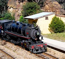 Ageless Fascination - Zig Zag Railway NSW Australia by Phil Woodman