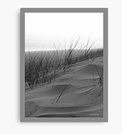 Dune Waves Canvas Print