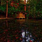 Alfred Nicholas' Boathouse #1 by Jason Green