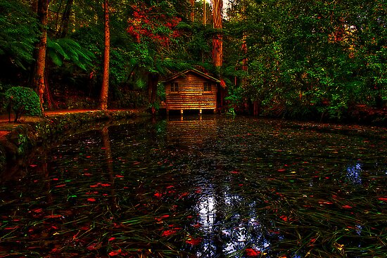 Alfred Nicholas' Boathouse #1 by Jason Green