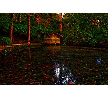 Alfred Nicholas' Boathouse #1 Photographic Print
