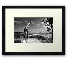 Beyond the Horizon Framed Print