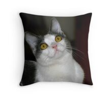 Tully Throw Pillow