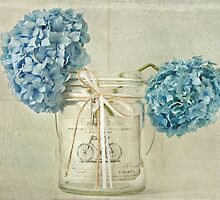 Vintage Blue Hydrangea by Evelyn Flint - Daydreaming Images