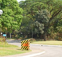 MMLDC's pathway in Antipolo, Philippines by walterericsy