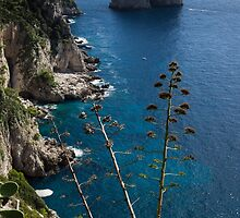 The Mediterranean Magic of Capri  by Georgia Mizuleva