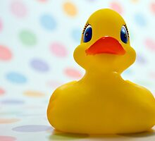 rubber ducky by Christopher Jenkins