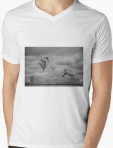 Fountain Lion  Mens V-Neck T-Shirt