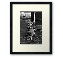 THE SIDEKICK Framed Print