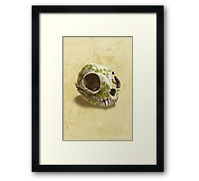 cat skull painted with wasabi flowers Framed Print