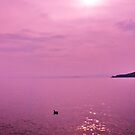 duck on the water in lake garda by xxnatbxx