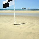 Beach Flags by StephenRB