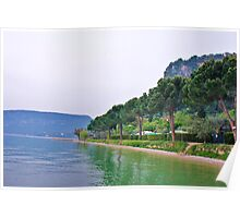 trees and lakes side Poster