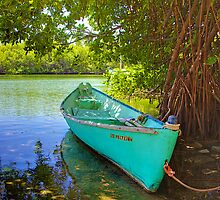 Dinghy by Bill Wetmore