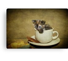Having a 'Cat'puccino on the way to 'Cat'mando  Canvas Print