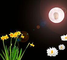 Visions Of Zen by Gail Bridger