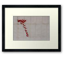 Splatter Framed Print