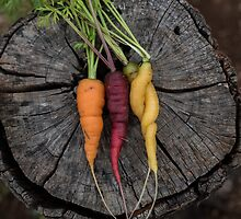 Multicoloured carrots by emmelined