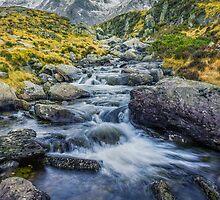 Snowdonia Mountains by Ian Mitchell