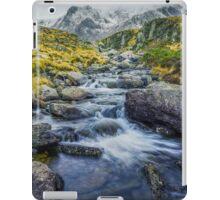 Snowdonia Mountains iPad Case/Skin