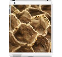 The Matrix iPad Case/Skin