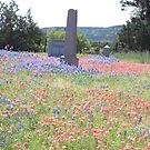 Graveyard in Hill Country by icesrun