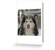 Gentle Storm Greeting Card