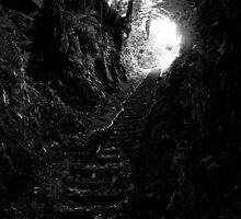 Tunnel with Light by Kayleigh Walmsley