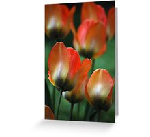 Painted Petals Greeting Card