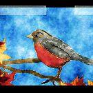 Watercolor Robin by colleen e scott