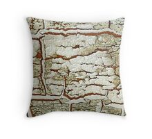 Age and Beauty  Throw Pillow