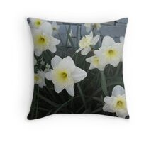 Daffodil Den Throw Pillow