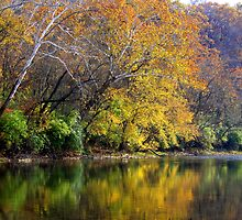 Fall on the River - Little Miami River Ohio by Tony Wilder