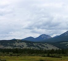 Into the Rockies by Alyce Taylor