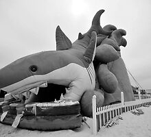 Shark anyone? by David Lee Thompson
