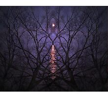 Purple Phantasm Photographic Print