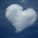 Love is in the Air by Harvey Schiller