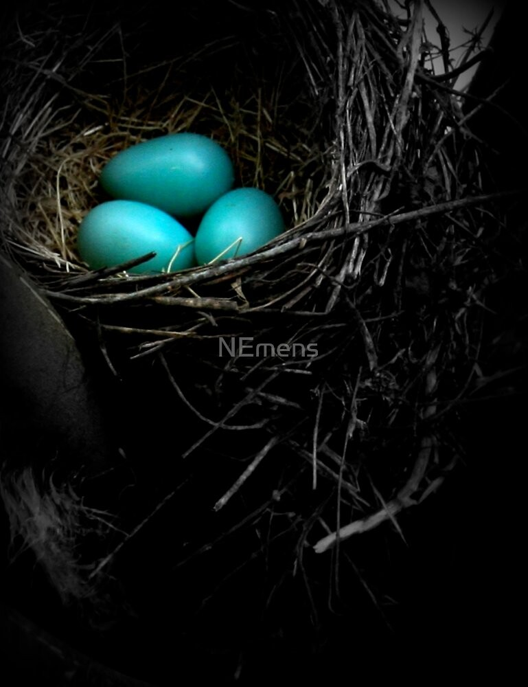 in the nest by NEmens