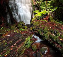 """""""Westmorland Falls"""" by Husky"""