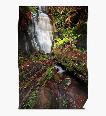"""Westmorland Falls"" Poster"
