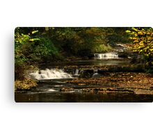 West Burton Falls, Bishopdale, Yorkshire Dales. Canvas Print