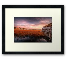 Low Down Framed Print