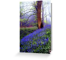 The Wonder of Nature Greeting Card