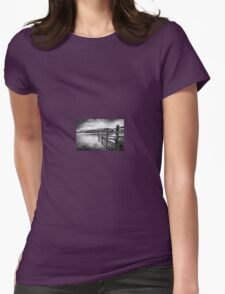 Fence Reflections  Womens Fitted T-Shirt
