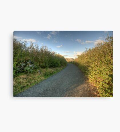 Burren Country road Canvas Print