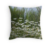 A field full of daisies Throw Pillow