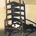 Cat In Wicker Chair by Barry W  King