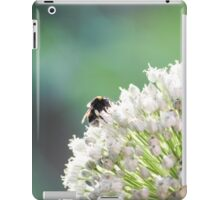 Bumblebee pollinating onion flower. A bee collects nectar from a flower bow iPad Case/Skin
