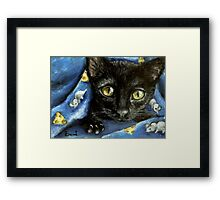 Of mice and cheese and woken kitty... Framed Print