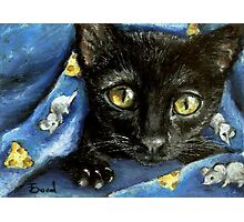 Of mice and cheese and woken kitty... Photographic Print